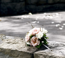 Flowers on Concrete